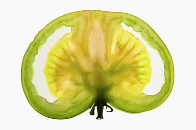 Slice Of Green Tomato, Backlit Poster