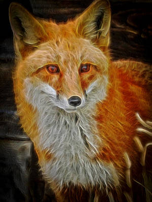 Sly Fox 2 Poster