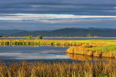 Small Pond Reflects The Clouds Poster by Chuck Haney