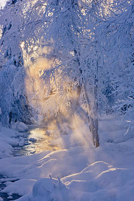 Small Stream In A Hoar Frost Covered Poster