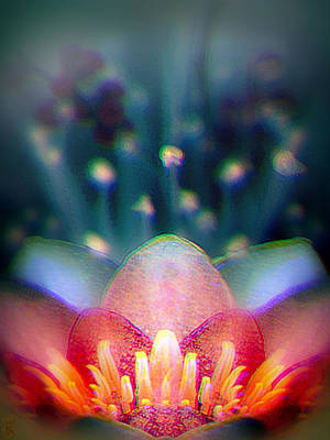 Smart Lotus Concept Poster