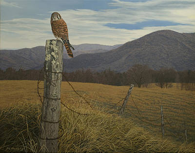 Smoky Mountain Hunter-american Kestrel Poster by James Willoughby III