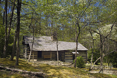 Smoky Mountains Hiking Club Cabin - D008449 Poster by Daniel Dempster