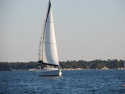 Smooth Sailing Carolina Poster by Joetta Beauford