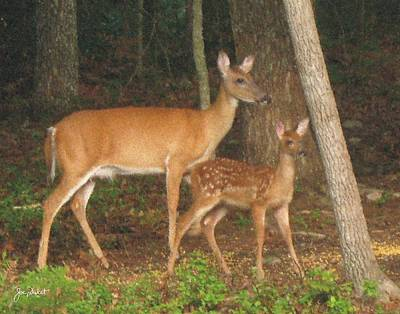 Smudgie And Fawn Pastel Poster