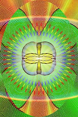 Snake Eye Poster