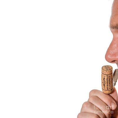 Sniffing Wine Cork Poster