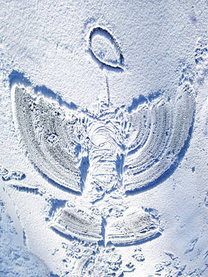 Snow Angel Poster