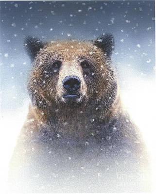 Snow Bear Poster by Robert Foster