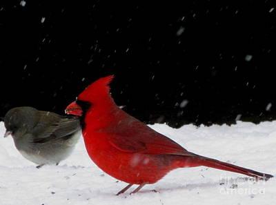 Snow Birds Poster
