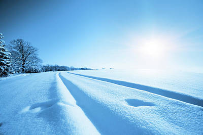 Snow Covered Field In Sunlight Poster by Wladimir Bulgar