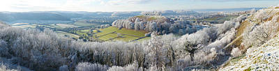 Snow Covered Trees In A Valley Poster by Panoramic Images