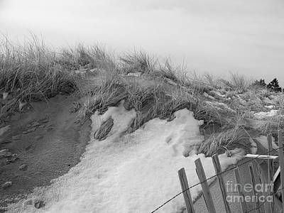 Snow Covered Sand Dunes Poster by Eunice Miller