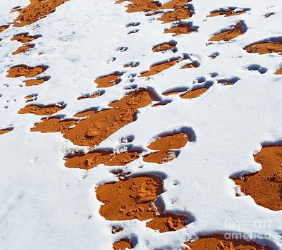 Snow On Dunes Poster