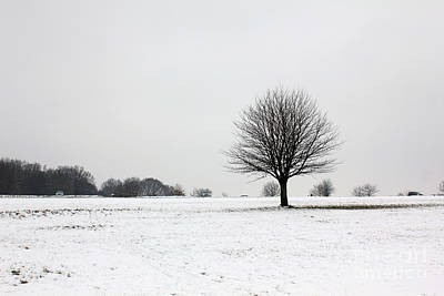 Snow On Epsom Downs Surrey England Uk Poster