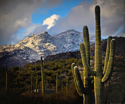 Snow On The Catalina Mountains Poster by Jon Van Gilder