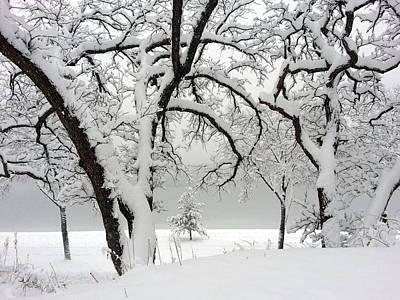 Snowfall Poster by A K Dayton