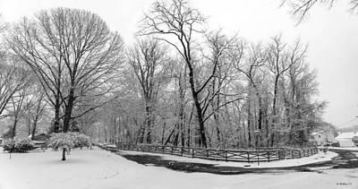 Snowfall Pano Poster by Brian Wallace