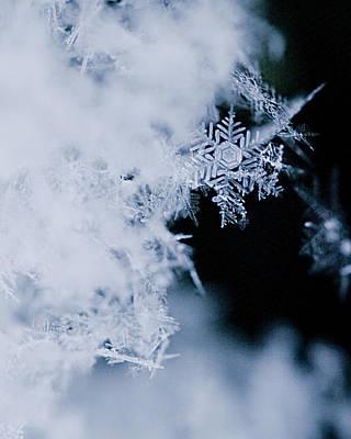 Snowflakes 5 Poster by Jeff Klingler