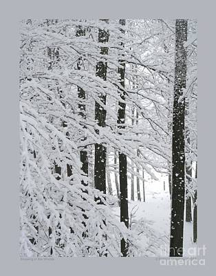 Snowing In The Woods Poster