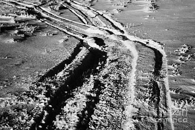 snowmobile tracks in snow across frozen field Canada Poster