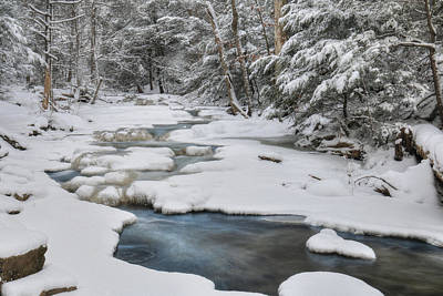 Snowy Falls Trail Poster by Lori Deiter