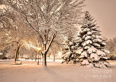 Poster featuring the photograph Snowy Night At Windom Park by Kari Yearous
