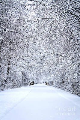 Snowy Path - Paintography Poster by Dawn M Smith