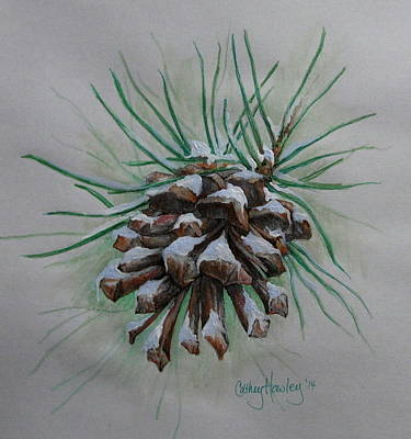 Snowy Pinecone Poster by Catherine Howley