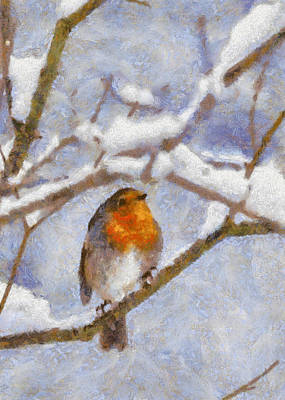 Snowy Robin Poster