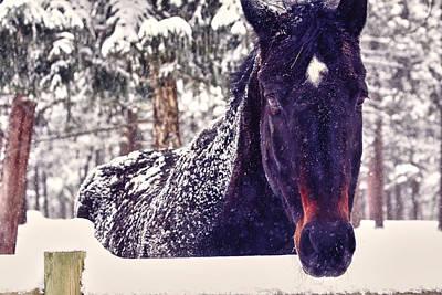 Snowy Spirit Poster