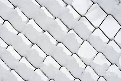 Snowy Wire Netting Poster