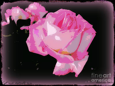 Poster featuring the photograph Soft And Delicate Pink Rose by Leanne Seymour