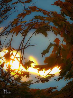 Soft Autumn Dawn Poster