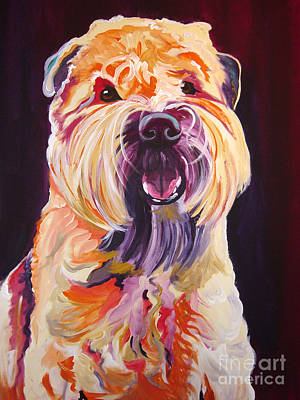 Soft Coated Wheaten Terrier - Bailey Poster by Alicia VanNoy Call