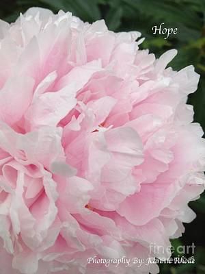 Poster featuring the digital art Soft Pink Peony by Jeannie Rhode
