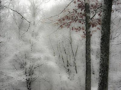 Soft Snow Poster by Nancy De Flon