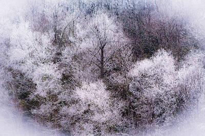 Soft Snowy Treescape Poster by Mela Luna