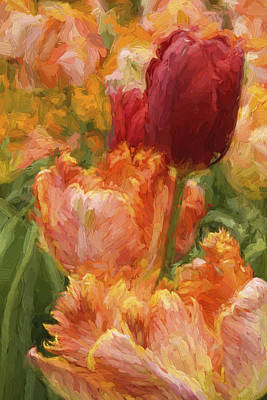 Soft Tulips Poster by Paul W Faust -  Impressions of Light