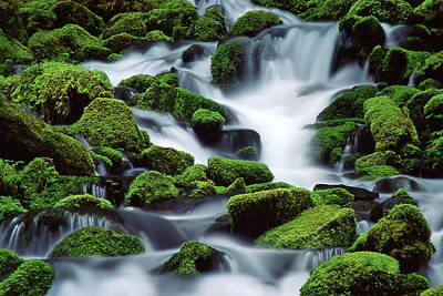Sol Duc Poster