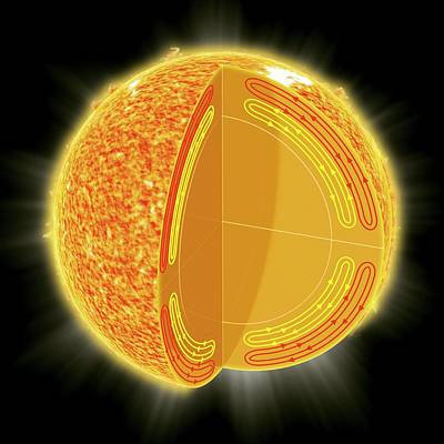 Solar Structure Poster by Claus Lunau