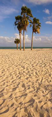 Sombrero Beach Poster