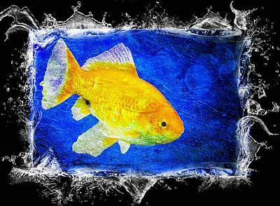Blue Poster featuring the photograph Something Fishy by Aaron Berg