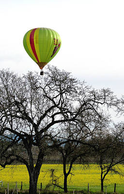 Sonoma Hot Air Balloon Over Mustard Field Poster