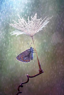 Sotto L'ombrello Poster