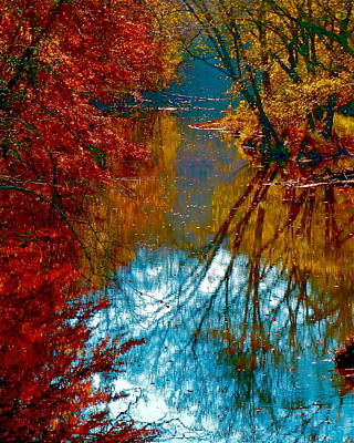 South Anna River Reflections Poster