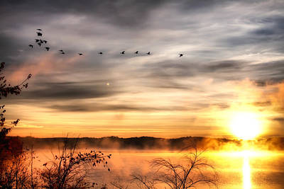 Poster featuring the photograph South Carolina Morning by Lynne Jenkins