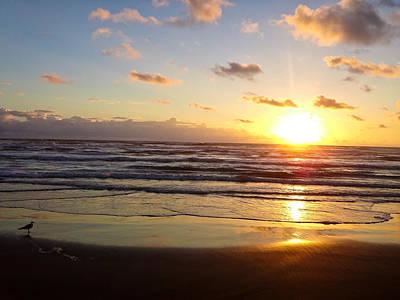 South Padre Island Sunrise Poster