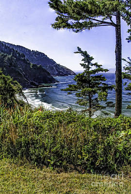 Southern Oregon Coastline Poster by Nancy Marie Ricketts