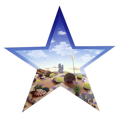 Southwest Star Poster by Snake Jagger